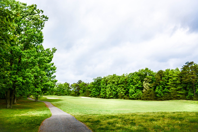 Golfing-Outtings-33