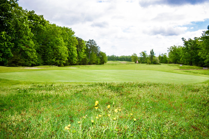 Golfing-Outtings-35